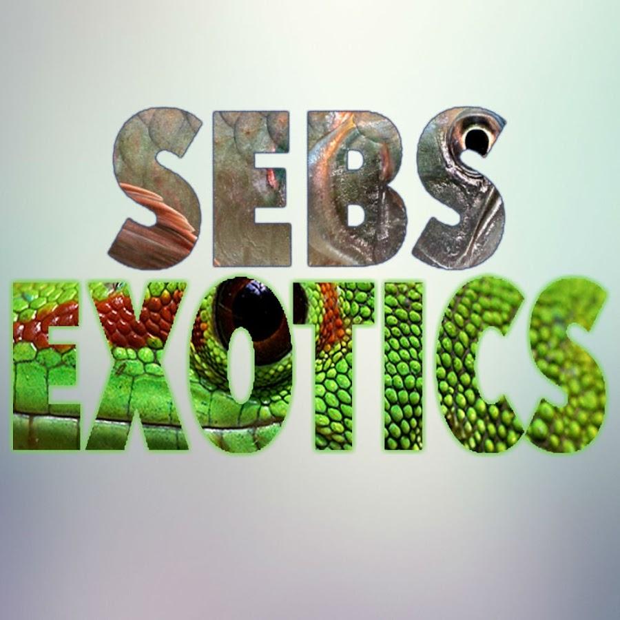 SebsExotics