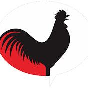 The Bush Chicken net worth