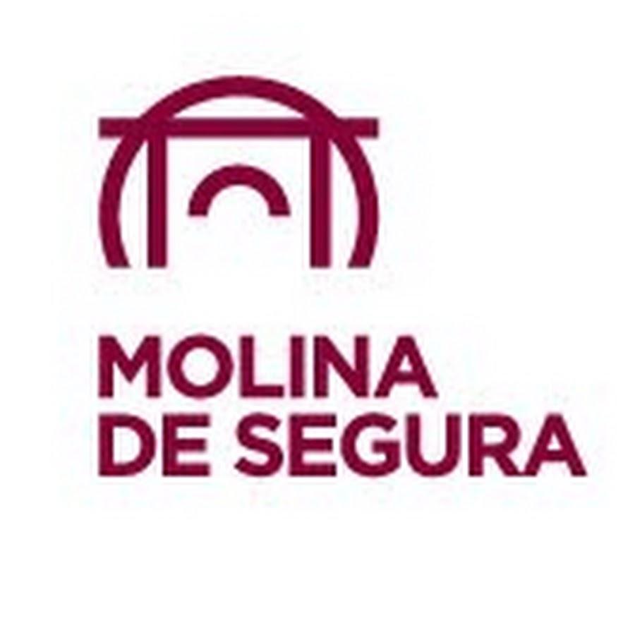 Viriato Seguridad asegura la vigilancia ciudadana en el municipio de Molina de Segura