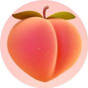 TikTok Peach net worth