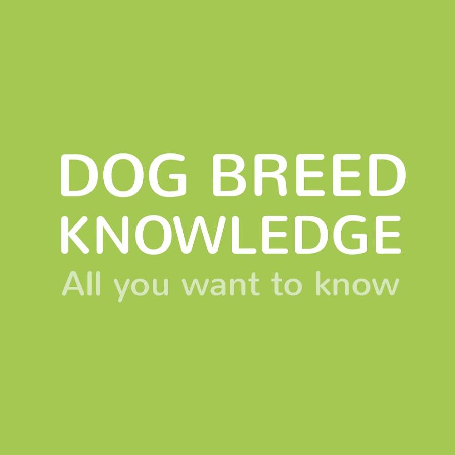 Dog Breed Knowledge