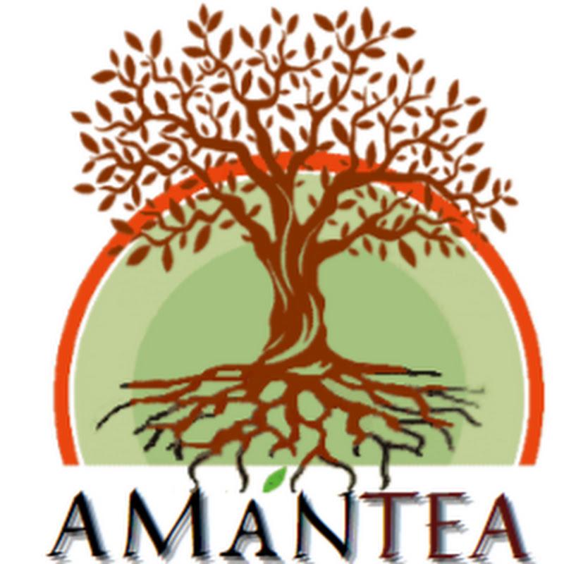 AmanTea Essential