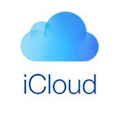 iCloud Activator net worth