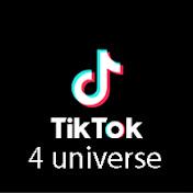 Tik Tok 4 Universe net worth