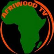 AFRIWOOD TV net worth