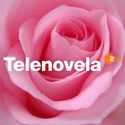 Telenovela ZDF net worth