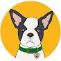 CBD DOG HEALTH - Youtube