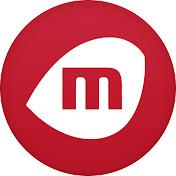 MIRO NET net worth