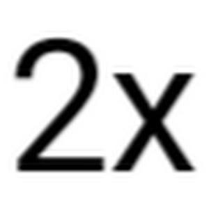 2x Speed