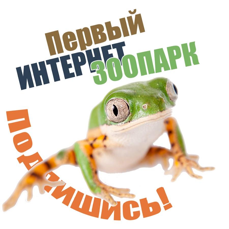 ZООCOM club