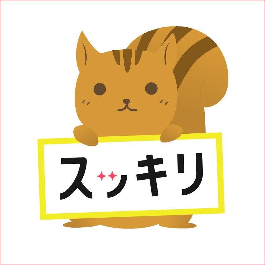 スッキリ 猫 動画 今日