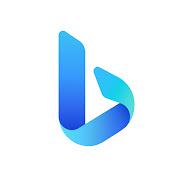 Microsoft Bing net worth