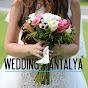 Wedding City Antalya / Wedding Planner