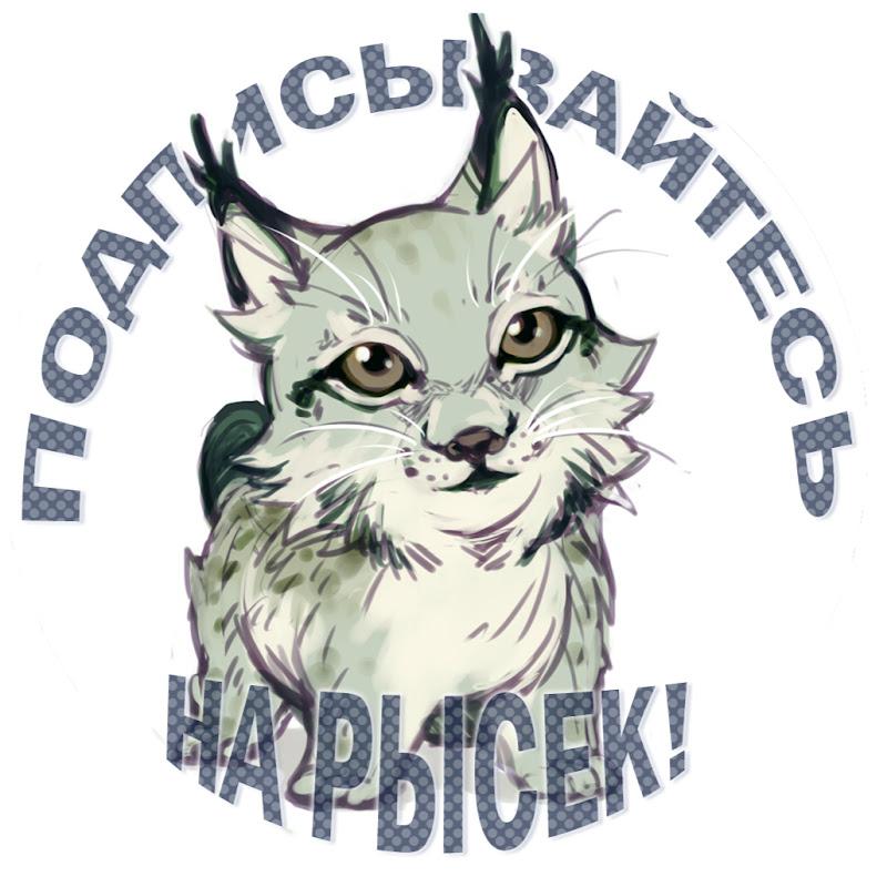BobCat ТВ