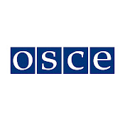 The Organization for Security and Co-operation in Europe (OSCE) net worth