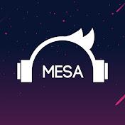 Mesa Gaming net worth