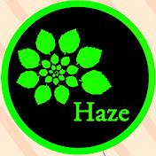 Haze Outdoors net worth