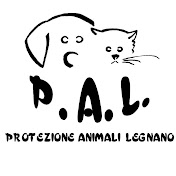pal Legnano net worth