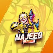 Najeeb Gaming Avatar
