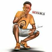 Setgala_Entertainment net worth