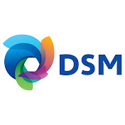 DSM net worth