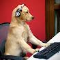 Dog Gaming and Animal Stuff (dog-gaming-and-animal-stuff)
