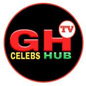 GhCelebsHUB TV net worth
