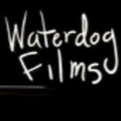 WaterDogFilms net worth