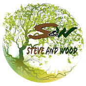 Steve and Wood net worth