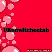 Uknowitcheetah net worth