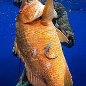 Spearfishing Jamaica net worth