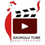 Akukulu Tube net worth