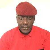 Dessin Animé Videoman Le politologue. net worth