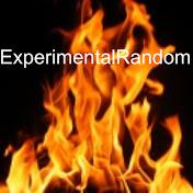 ExperimentalRandomStuff net worth