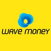 Wave Money net worth