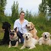 My Dog Ru - Дрессировка и воспитание собаки