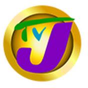 Television Jamaica net worth