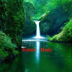 DAUT MUSIC OPM