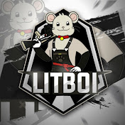 LitBoi YT net worth