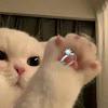 Radio 2 0 0 0