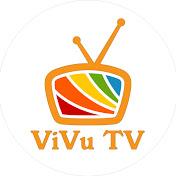 ViVu TV net worth