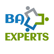 BA-EXPERTS net worth