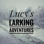 Lucy's Larking Adventures net worth