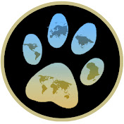 Dogs In The World