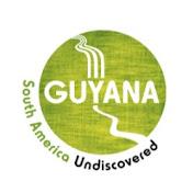 Discover Guyana net worth