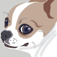 뷔브독 bwibeu_dog
