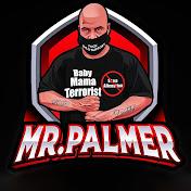 Mr. Palmer net worth