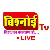 Bishnoi Tv net worth