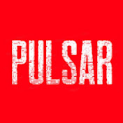 Pulsar net worth