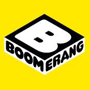 Boomerang France net worth